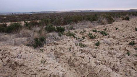 La Región compra un terreno en La Alcanara para su protección