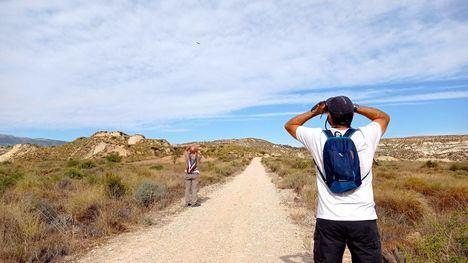 El avistamiento de aves en Sierra Espuña, una alternativa turística