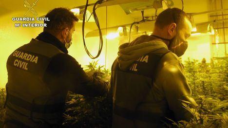 V/F Dos detenidos en una operación antidroga en Librilla