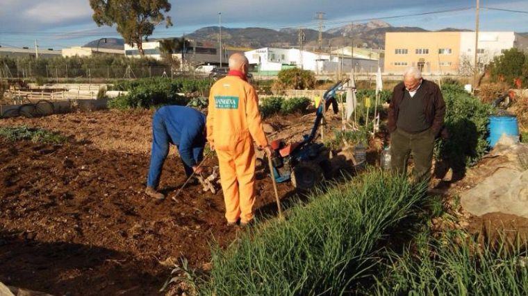 Renovado el convenio para mantener los huertos ecológicos