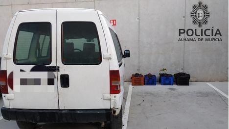 La Policía Local atrapa a dos ladrones de uvas en plena 'faena'