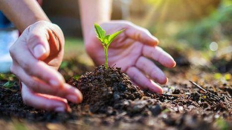 Ayudas para proyectos de interés en materia medio ambiental