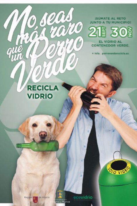 Reciclar vidrio para crear un hogar sostenible de mascotas