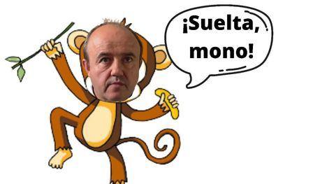 Suelta, mono