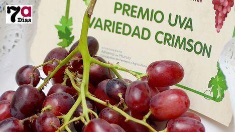 FOTOS Premios de la Muestra de Uva a los productos agrícolas