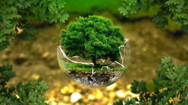 Subvención por un total de 4.000 € a programas medioambientales