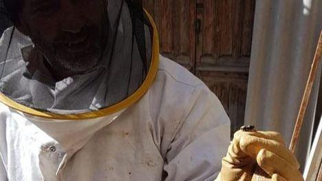 FOTOS Protección Civil de Totana retiran un nido de avispas en Mula