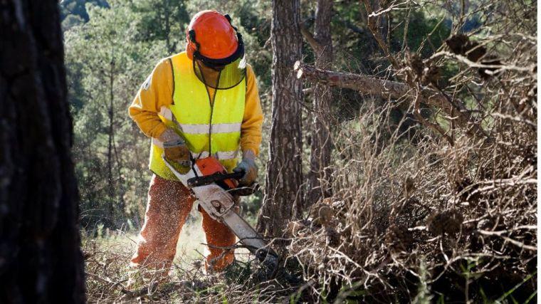 Labores de desbroce en Sierra Espuña para prevenir incendios