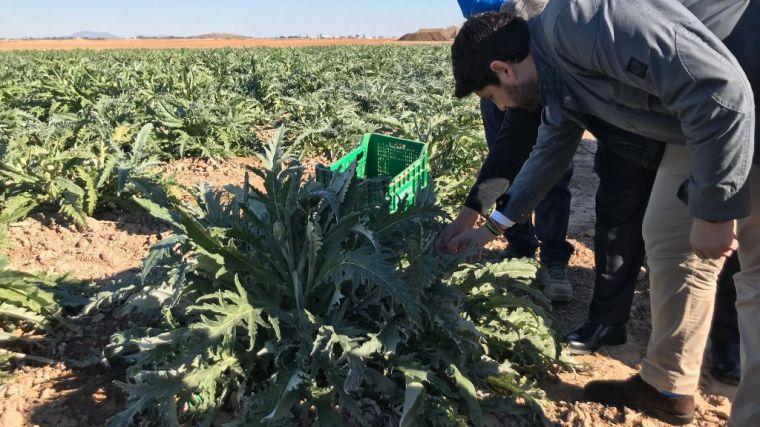 El frío causa pérdidas en la agricultura por 2,5 millones de euros