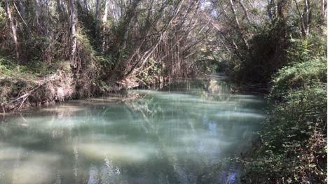 La Región cuenta con 62 espacios incluidos en el Inventario Nacional de Humedales