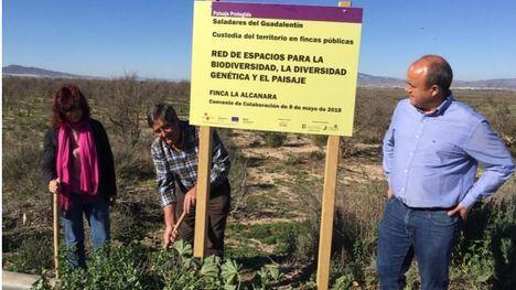 Nuevas señales en La Alcanara resaltan su valor medioambiental