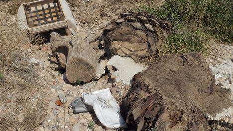 FOTOS Medio Ambiente retira 125 toneladas de basuras de las ramblas
