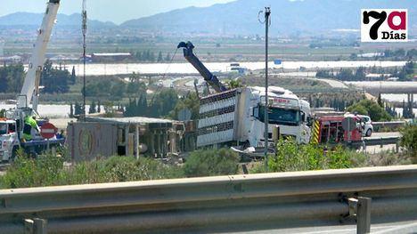 VÍDEO Un camión con cerdos vuelca en la salida a la autovía