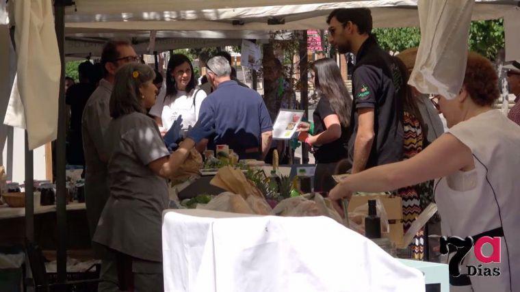 VÍDEO La V Ecoferia anima la mañana del domingo en La Cubana