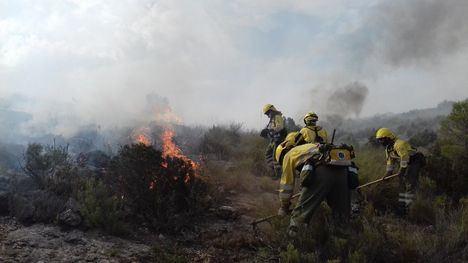 El año pasado se produjeron cuatro incendios forestales que afectaron a más de una hectárea de terreno, una de las cifras más bajas de los últimos 20 años.