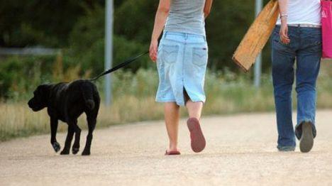 30 euros de multa por llevar al perro suelto, sin bozal ni correa