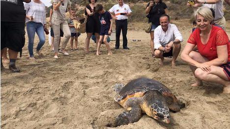 Liberan a una tortuga hallada enredada en plástico en Mazarrón
