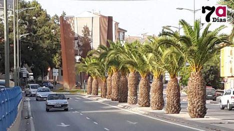 Alhama registra 40'6º, la tercera temperatura más alta de España
