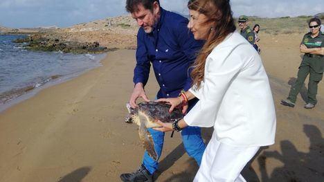 El director general del Medio Natural, Fulgencio Perona, libera a una de las tortugas, junto a la concejala de Ciudad Sostenible y Proyectos Europeos del Ayuntamiento de Cartagena, Cristina Mora.