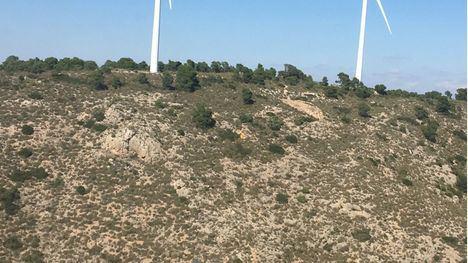 Muere un parapentista en Jumilla al caer de una altura de 30 metros
