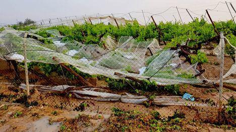 Alhama solicita ayudas a la Comunidad por los daños de la lluvia
