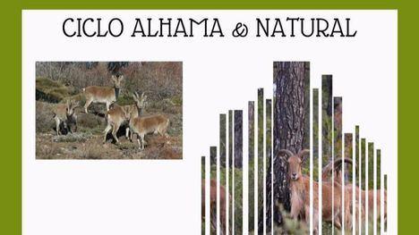 La cabra montés, protagonista del ciclo 'Alhama & Natural'