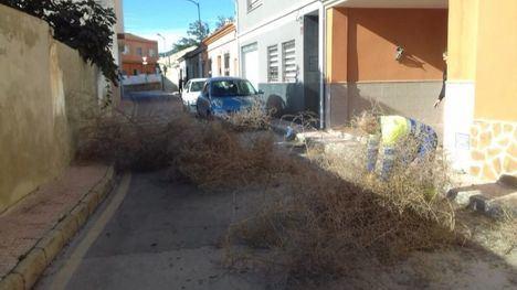 FOT. El viento ocasiona varios desperfectos este fin de semana