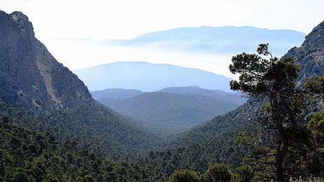 Restricciones en Sierra Espuña por nidificación del águila real