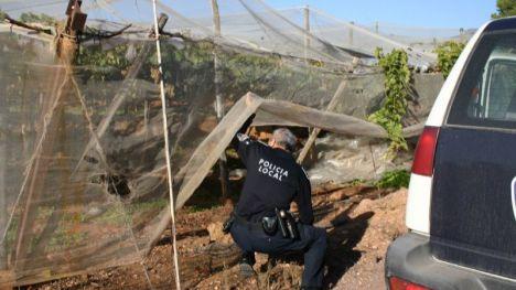 Dos detenidos por intento de robo y allanamiento en Totana