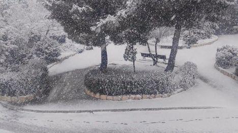 Imagen de la nevada que ha caído en El Sabinar.