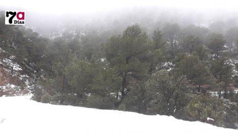 La nieve en Sierra Espuña ya alcanza entre 10 y 15 centímetros