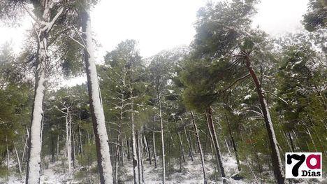 VÍDEO/FOTOS El efecto hipnótico de la nieve en Sierra Espuña