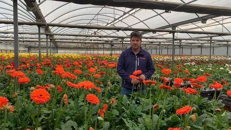 Pedro Marín: 'El sector de la flor cortada nos hemos ido a la ruina'