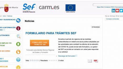 Empleo habilita un formulario online para las gestiones con el SEF