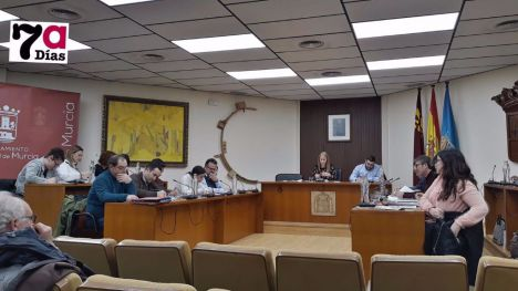El Pleno se reúne el viernes para debatir medidas por el Covid19