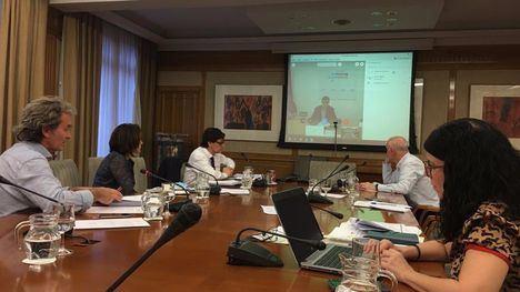 Imagen de la reunión de los responsables del Ministerio de Sanidad con el consejero de Salud, Manuel Villegas, este miércoles por videoconferencia.
