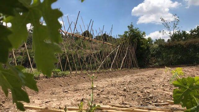 Alhama colabora con la red Agroeconatura por la agricultura sostenible