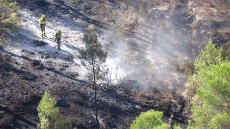 Estabilizado el incendio en Mula que ha arrasado 350 hectáreas