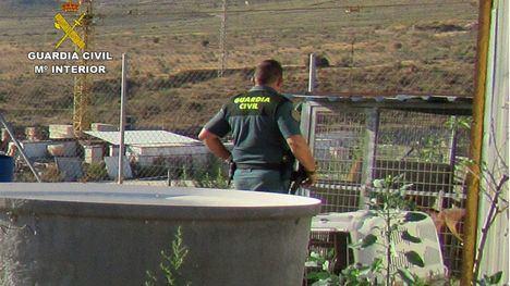 FOTOS Investigan a un hombre en Mazarrón por maltrato animal