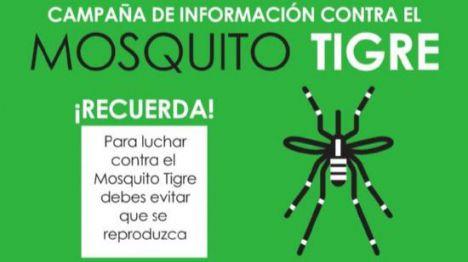 El Ayuntamiento pide la colaboración vecinal frente al mosquito tigre