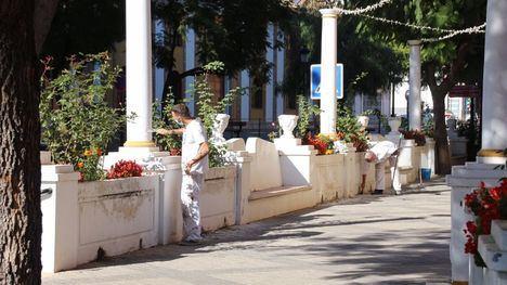 FOTOS Los maceteros de Alhama se van lavando la cara