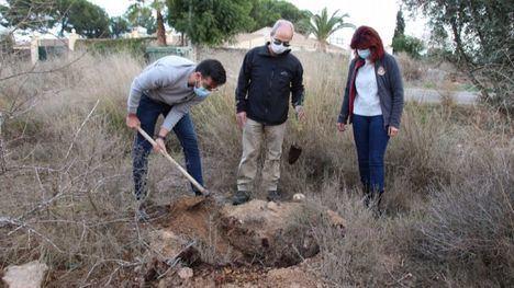 FOTOS Acude planta 100 ejemplares de tarays en la Alcanara