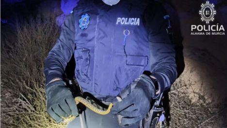 La Policía captura una serpiente en el portal de una vivienda