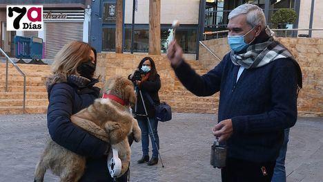 V/F Nuestras mascotas ya tienen la bendición por San Antón