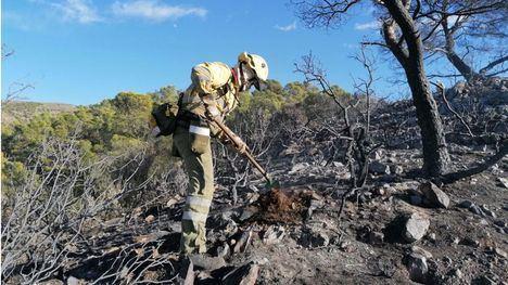 Dan por extinguido el incendio en la Sierra de Carrascoy
