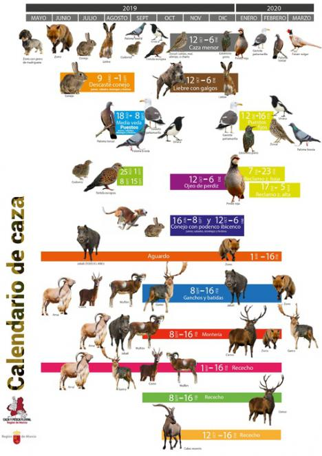 El calendario de caza incluye el arruí para su control poblacional